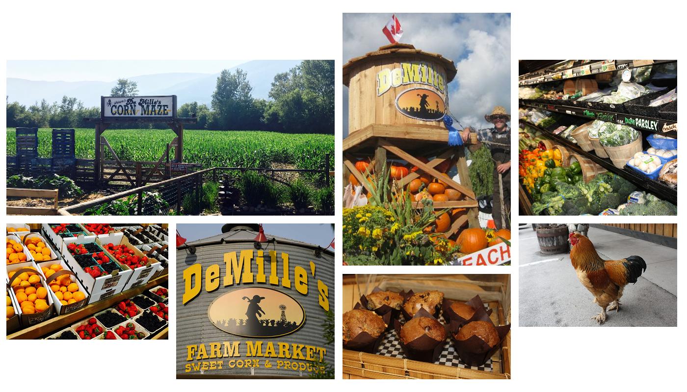 DeMille's Farm Market